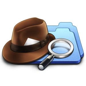 Duplicate Detective Logo