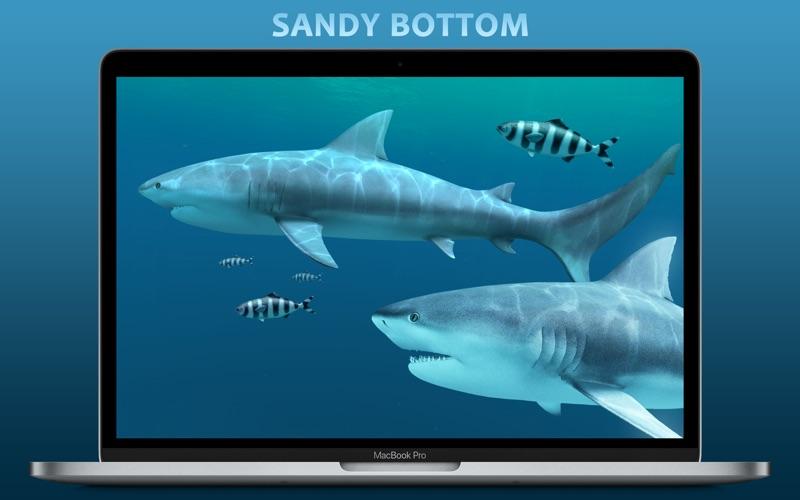 Sharks 3D Mac